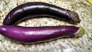 chinese eggplant 2